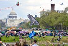 Photo of Cherry Blossom Parade Announces Star-Studded Lineup