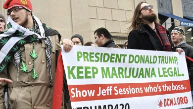 Photo of Demonstrators Hand Out Free Weed in Protest of Trump Inauguration (Photos by Travis Riddick)