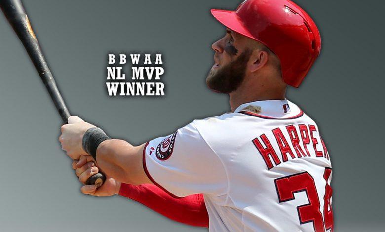 Washington Nationals' Bryce Harper /Photo: mob.com