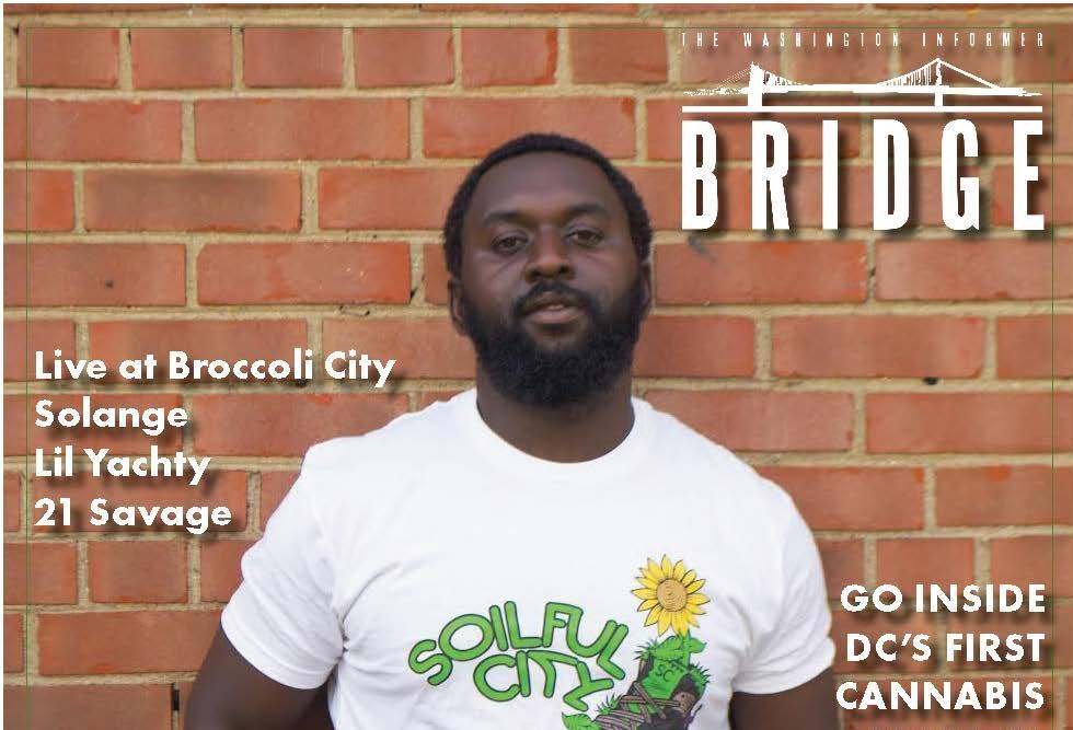 WI Bridge April 2017 copy