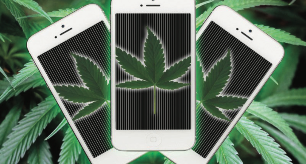 Photo of Cannabis App Helps Medical Users Rate Weed