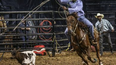 Photo of Black Rodeo Show to Hit Virginia