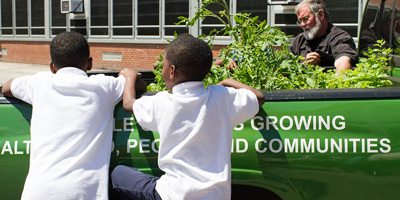 Photo of D.C. EDUCATION BRIEFS: Strawberries and Salad Greens Day
