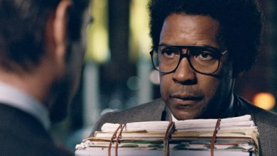 Photo of MOVIE REVIEW: 'Roman J. Israel, Esq.'