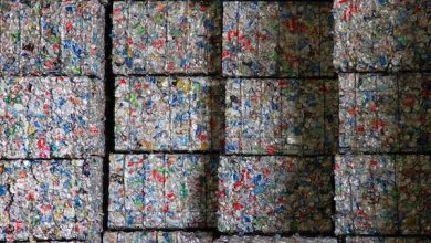 Photo of Maryland's Single-Stream Recycling Program Produces Appreciative Results