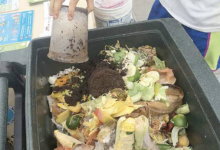Photo of Food Waste Drop-Off Locations Reopen for Earth Month