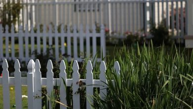 Photo of EDITORIAL: Fairy Tales of White Picket Fences and Two-Car Garages