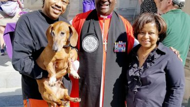 Photo of God's Creatures: Blessing Services Held for Animal Companions