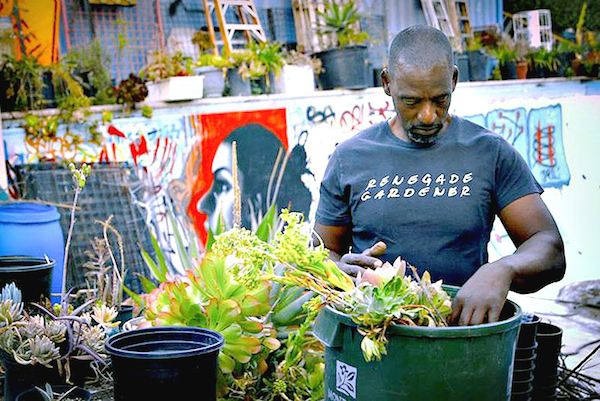 More Blacks are making gardening their major emphasis. (Courtesy photo)