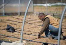 Photo of Black Farmers, HBCUs Winners in Farm Bill