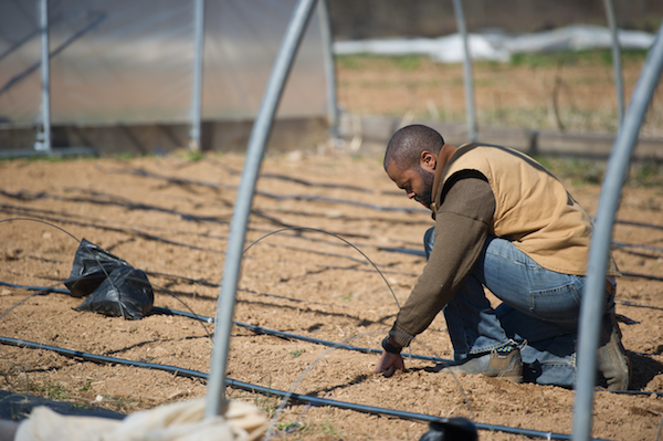 **FILE** African-American farmer examining irrigation system. (Photo by: Edwin Remsburg/VW Pics via Getty Images)