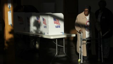 Photo of Voter Suppression Includes Long Lines Faced by Minority Communities