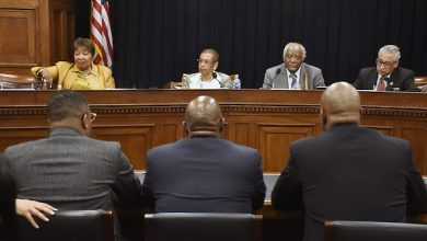 Photo of Congressional Hearing Scrutinizes Black Male Mentorship