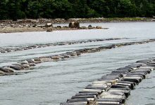 The Potomac River estuary water quality needs improvement. (Courtesy of NOAA)