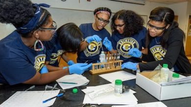Photo of United Negro College Fund Program to Support 500 STEM Students