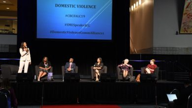 Photo of ALC Panel Targets Domestic Violence