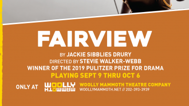 Photo of Review: Fairview at Wooly Mammoth Theater