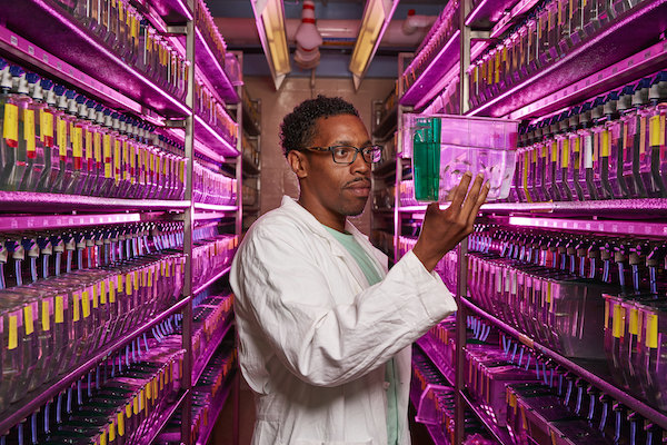 National Institutes of Health lab photo (Courtesy of NIH)
