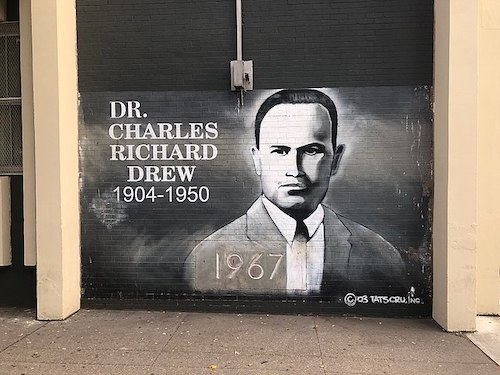 A mural of Doctor Charles R. Drew at the Charles Richard Drew Educational Campus / Intermediate School in the Bronx borough of New York City (Hugo L. González via Wikimedia Commons)