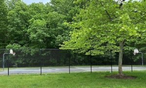 Most basketball rims and nets have been taken down throughout Prince George's County during the coronavirus pandemic. As of May 28, these baskets remain up at Kings Grants, a townhouse development in Upper Marlboro. (William J. Ford/The Washington Informer)