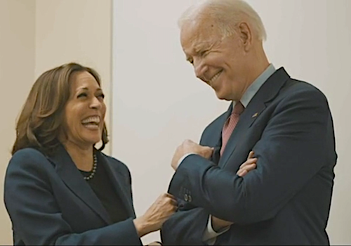 Democratic presidential nominee Joe Biden (right) selected Kamala Harris (left) as his running mate in August.