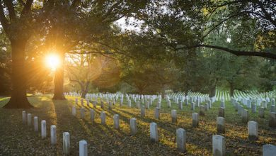 Photo of Arlington National Cemetery Reopens for Family Gravesite Visits: Report