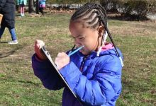 The Panorama survey is voluntary and confidential. (DCPS photo)