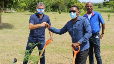 Photo of Pandiani Vows to Continue Working With Barbados