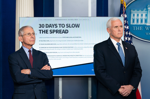 **FILE** Vice President Mike Pence, joined by Director of the National Institute of Allergy and Infectious Diseases Dr. Anthony S. Fauci, during a coronavirus update briefing in the James S. Brady Press Briefing Room of the White House (Andrea Hanks/The White House)
