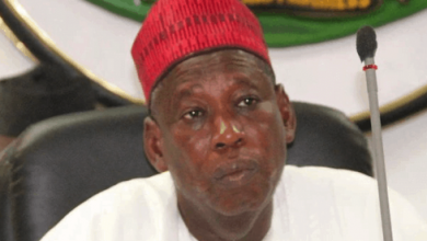 Photo of Ganduje Takes Fresh Action After American University Denied Appointing Him as Visiting Professor