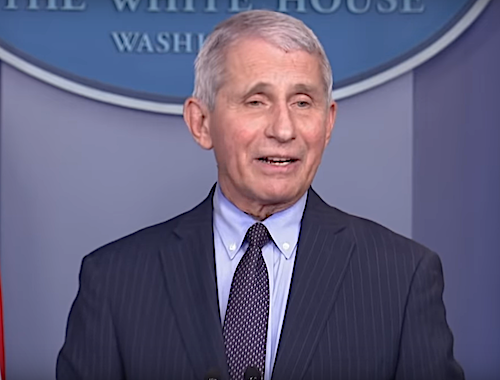 Dr. Anthony Fauci, director of the National Institute of Allergy and Infectious Diseases, speaks with reporters in the James Brady Press Briefing Room at the White House on Jan. 21.