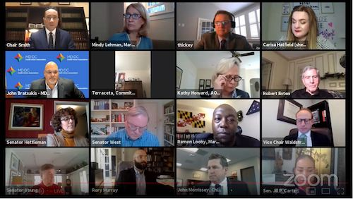 Members of the Maryland Senate Judicial Proceedings Committee and those testifying take part in virtual briefing on housing during the coronavirus pandemic.