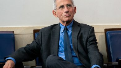 Photo of Fully Vaccinated People Can Meet with Minimal Risk: Fauci
