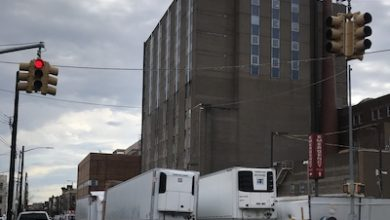 Photo of Hundreds of Dead Bodies in NYC Remain in Refrigerated Trucks: Report