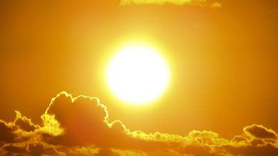 Photo of EDITORIAL: Enjoy the Summer Sun but Be Aware of the Potentially Deadly Heat