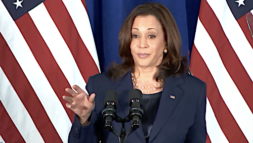Vice President Kamala Harris speaks during a July 8 press conference at Howard University in Washington, D.C., to announce a $25 million voting-rights initiative of Democratic National Committee.