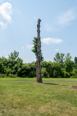 The Memory Tree at The Well at Oxon Run Park (WI photo)