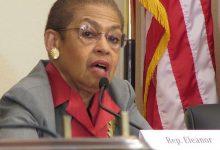 **FILE** Eleanor Holmes Norton represents D.C. in the U.S. Congress. (Roy Lewis/The Washington Informer)