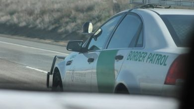 **FILE** A Chevrolet Caprice PPV of the United States Border Patrol driving southbound on San Diego Freeway (Noah Wulf via Wikimedia Commons)